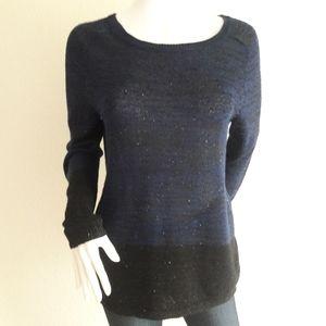 Loft Longsleeve Sequined Sweater NWT